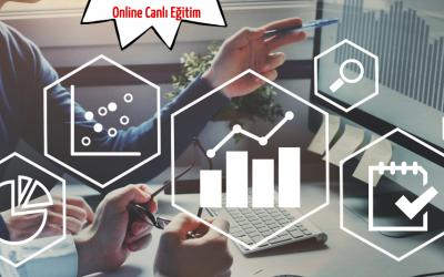 Veri Setleri ve Grafiklerle Ekonomiyi Analiz Etmek