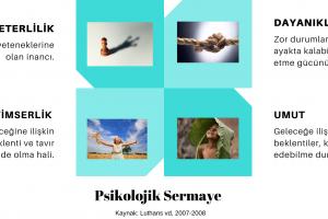 Psikolojik_Sermaye